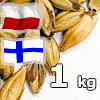 Karmelowy 50 EBC (czerwony) Viking Malt 1 kg