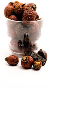 Suszony owoc dzikiej róży (bez pestek) 100 g