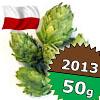 Magnum 2013 - 50 g szyszki