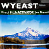 Wyeast XL 1203 Burton IPA Blend - Private Collection