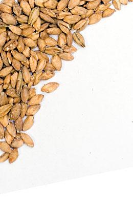 Słód z pszenicy samopszy (ekologicznej) Steinbach 8 EBC 5 kg