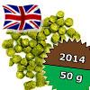 Minstrel UK 2014 - 50 g granulat 4,2% aa [LAMBIC]