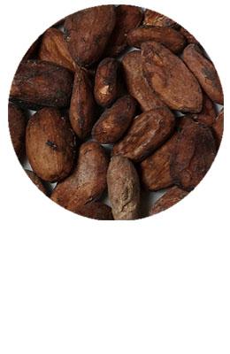 Kakaowiec ziarno 100 g