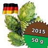 Tettnanger DE 2015 - 50 g szyszki 2,1% aa