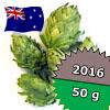 Waimea NZ 2016 - 50 g szyszki 17,09% aa