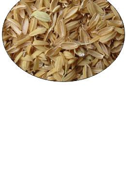 Łuska ryżowa sterylizowana 200 l
