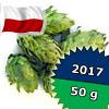 Marynka PL 2017 - 50 g szyszki 8,3% aa