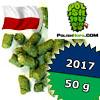 Sybilla PL 2017 Polish Hops - 50 g granulat 6,9% aa