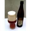 American India Pale Ale (AIPA) 16º BLG - szyszka