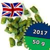 Flyer UK 2017 - 50 g granulat 7,1% aa