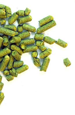 Fuggles UK 2017 - 5 kg granulat 5,9% aa