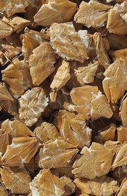 Płatki jęczmienne błyskawiczne Crisp 25 kg