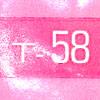 Safbrew T-58