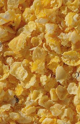 Płatki kukurydziane błyskawiczne Crisp 25 kg