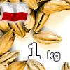 Monachijski Jasny 12-18 EBC Viking Malt 1 kg