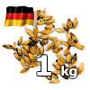 Caramunich (R) typ I 80-100 EBC Weyermann 1 kg