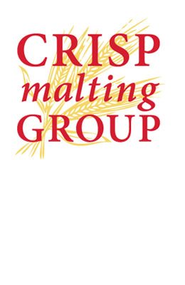 Crisp Golden Ale 10,7º BLG
