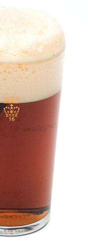 India Pale Ale - IPA 14º BLG
